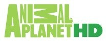 телеканал Animal Planet HD