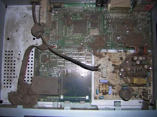 Пыль и грязь в ресивере тоже могут привести приемное устройство к поломке