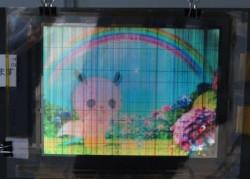Гибкий 8-дюймовый OLED дисплей от корпорации NHK