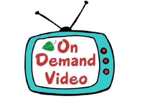 Телевизионные сервисы «видео по запросу», так называемые on demand TV