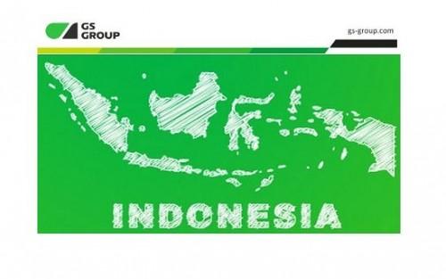 GS Group планирует начать вещание в Индонезии