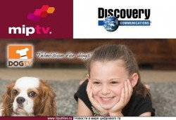 Discovery Communications вкладывает средства в Dog TV