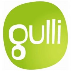 Gulli - еще один французский телеканал