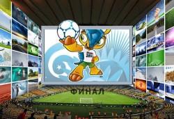Финальный матч ЧМ будет смотреть как минимум 909 миллионов телезрителей