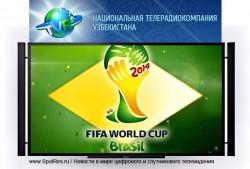 УзНТРК будет транслировать чемпионат мира по футболу