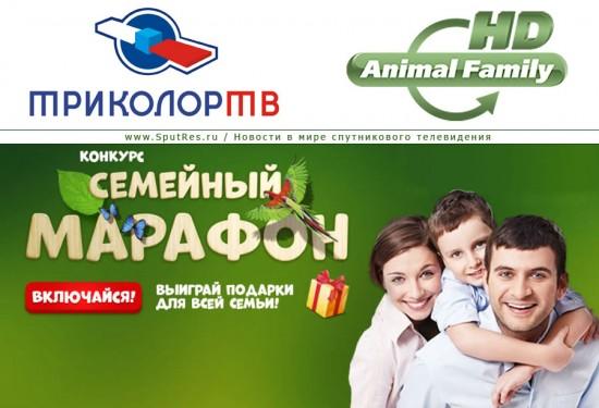 «Триколор ТВ» и Animal Family HD проводят новый конкурс